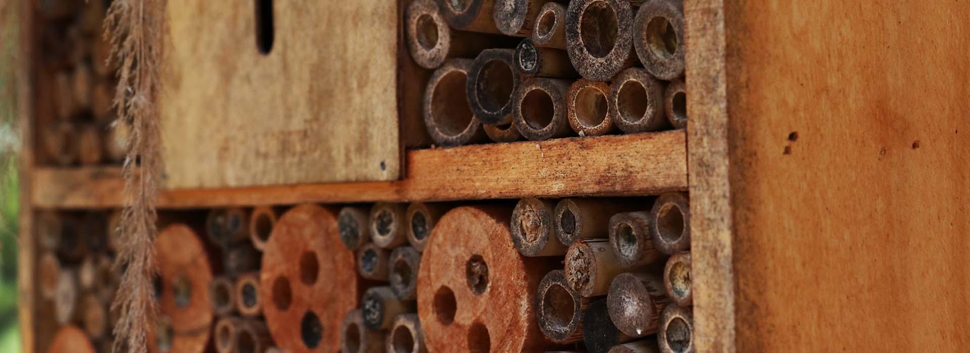 Insektenhotel ausstatten