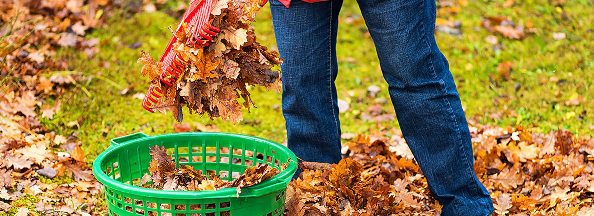 Wie pflege ich mein Rasen im Herbst?